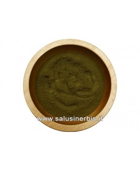 Tè Verde Polvere