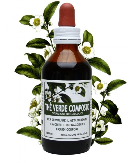 Thè verde composto 100 ml
