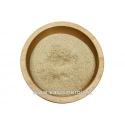 Ortica radice polvere