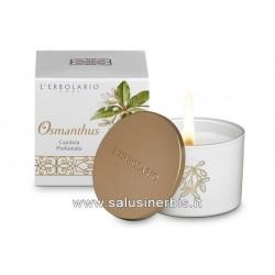 Osmanthus - Candela profumata