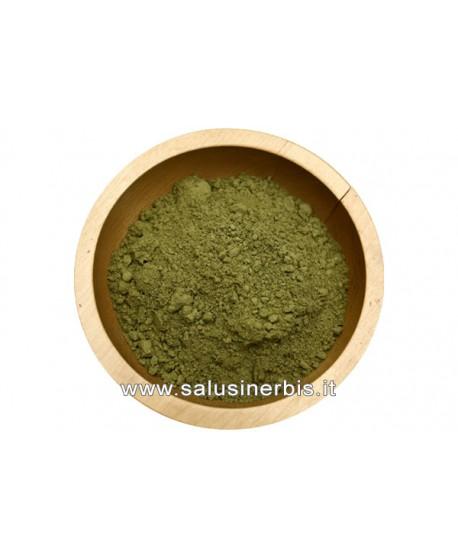 Stevia Polvere