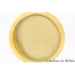 Eleuterococco radice polvere